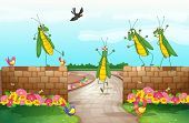 Illustration of grasshoppers near the wall