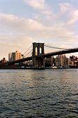 Brooklyn Bridge And Brooklyn Skyline Portrait