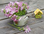 Villatic Still Life With Of Pink Mallow On A Wooden Background