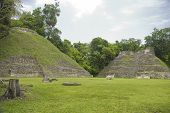Mayan Structures At Caracol