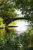 Arched Bridge Over Green Riverbank