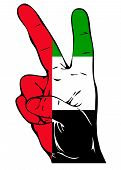 Peace Sign of the UAE flag