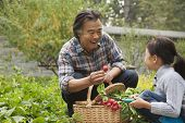 stock photo of granddaughters  - Grandfather and granddaughter in garden - JPG