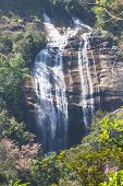 Siribhum Waterfall With Wild Himalayan Cherry Flower In Doi Inthanon ,chaingmai Thailand