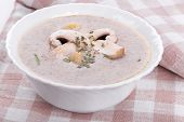 Mushrooms Cream Soup With Agaric