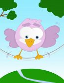Unbalanced funny bird