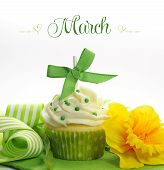 Beautiful Green And Yellow Spring Theme Cupcake With Doffodils And Decorations For The Month Of Marc