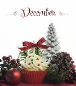 Beautiful Christmas Holiday Theme Cupcake With Seasonal Flowers And Decorations For The Month Of Dec