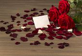 roses as a gift and surprise to a party. symbolic photo for birthday, mother's day, love, valentine's day
