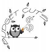 Budget cuts dollar