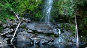 Waterfall rockpool in country Victoria