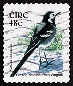 Postage Stamp Ireland 1998 Pied Wagtail, Passerine Bird