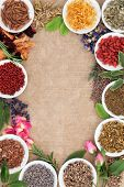 Medicinal herb selection also used in witches magical potions over old paper background.
