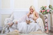 Luxurious Blonde Woman In A White Dress With A Dog  Pekingese