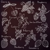 Stylish Berries Set In Vector. Raspberry, Bilberry, Cherry,cowberry,black Currant, Strawberry, Sea B