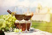 Wine and grapes.Switzerland