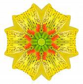 Kaleidoscopic Flower Mandala  Isolated On White