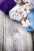 picture of boll  - Branch of ripe cotton bolls on multicolor bath towels - JPG