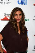 LOS ANGELES - AUG 21:  Heather McDonald at the OK! TV Awards Party at Sofiitel L.A. on August 21, 2014 in West Hollywood, CA