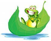 Illustration of a smiling frog on the big leaf on a white background