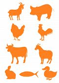 image of animal silhouette  - Illustration of a set of farm animal shapes - JPG