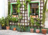 Flowers In Terracotta Pots - Garden Before A House.