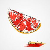 Постер, плакат: Grapefruit