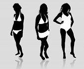 picture of lap dancing  - Collection of women in bikini vector in black - JPG