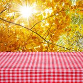 Canvas Texture Or Background On Table.  Autumn Landscape