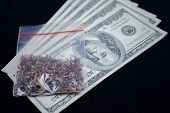 Marijuana Packet On Us Currency