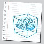 Brain in cube
