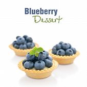 Tart With Fresh Blueberries