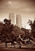 Central Park Spring and horse carriage in midtown Manhattan New York City
