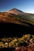 El Teide National Park, Tenerife, Canary Islands, Spain