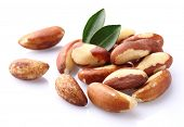stock photo of brazil nut  - Bertholletia - JPG