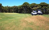 picture of buggy  - Buggy on the field for golf in Turkey - JPG
