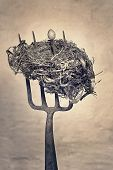 Still life of Birds nest and birds egg skewered on an old rusty garden forkBirds Nest