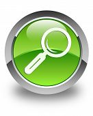 Search Icon Glossy Green Round Button