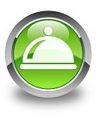 Food Dish Icon Glossy Green Round Button