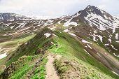 The trail on ridge.