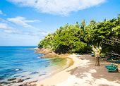 Vacation Retreat Scene under the Sun