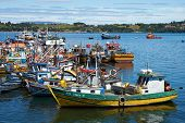 Fishing Boats of Chiloé
