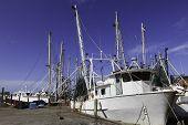 Gulf Shrimp Boat