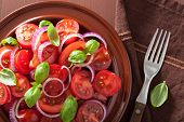 foto of vinegar  - healthy tomato salad with onion basil olive oil and balsamic vinegar - JPG