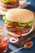 image of beef-burger  - burger with beef patty lettuce onion tomato ketchup - JPG