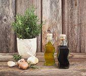 stock photo of vinegar  - Olive oil and vinegar in bottles with garlic and rosemary - JPG