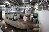Rustic Dairy Operation In Costa Rica