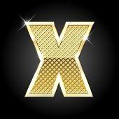 stock photo of letter x  - Vector metal gold letter X - JPG