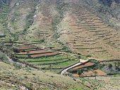 pic of atlantic ocean  - Agriculture on terraces in the green valley of Vega de Rio Palmas on the Canary Island Fuerteventura - JPG