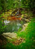 Постер, плакат: Beautiful Small Waterfall Oasis In A Lush Green Forest